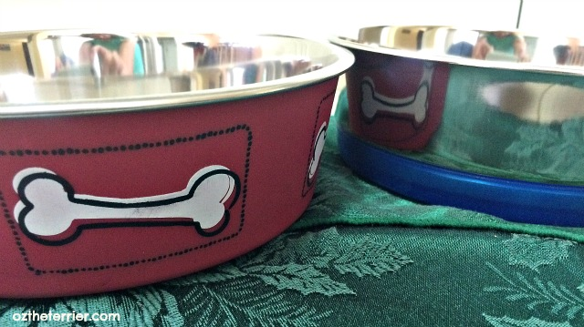 Loving Pets Red Bella Bowl and Blue Clip On Dolce Dish