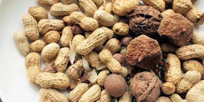Makanan Sehat untuk Penderita Diabetes Melitus