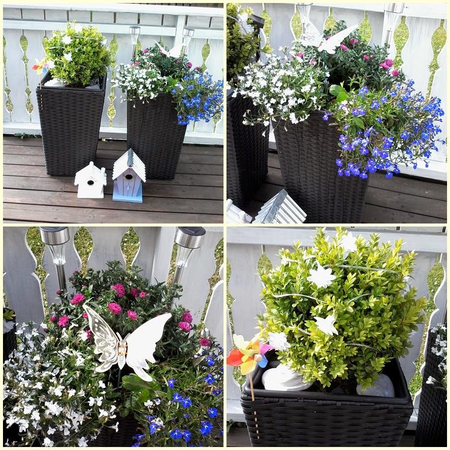 Blomster i krukker hele sommeren – Leiligheten dekor