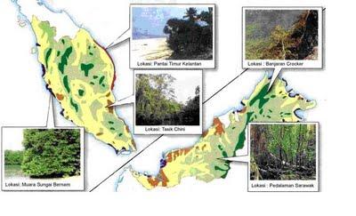 Geografi Tingkatan 1 Bab 11 Jenis Dan Taburan Tumbuhan Semula Jadi Dan Hidupan Liar