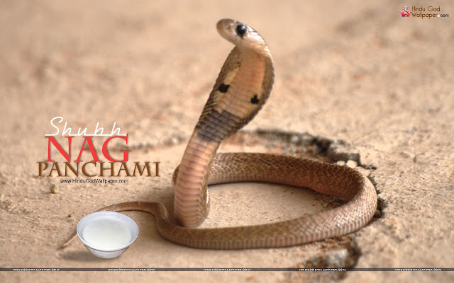 happy-nag-panchami-hd-pictures-2015