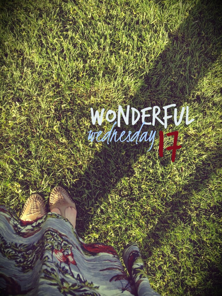 Wonderful Wednesday 17