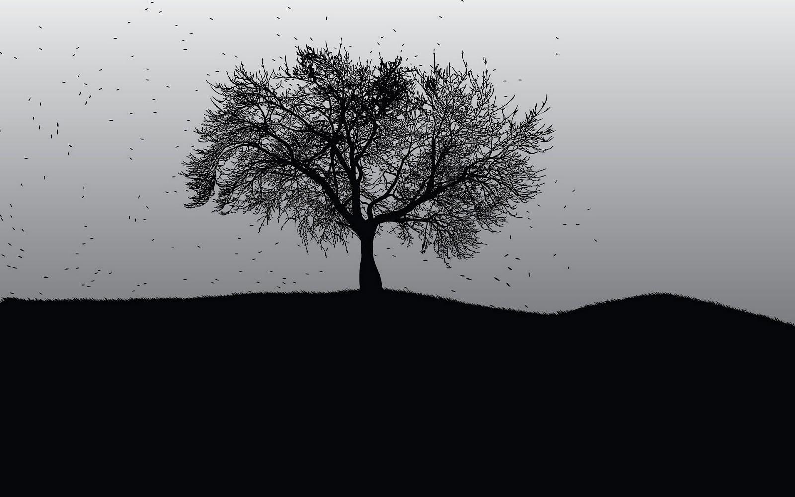 hd-zwart-wit-achtergrond-met-een-boom-hd-zwart-wit-wallpaper.jpg