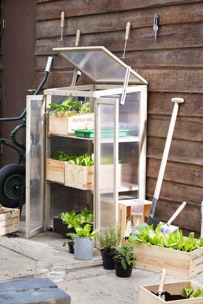 Um jardim para cuidar: Jardinar na cidade...? possivel