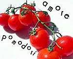 Pomidorowo