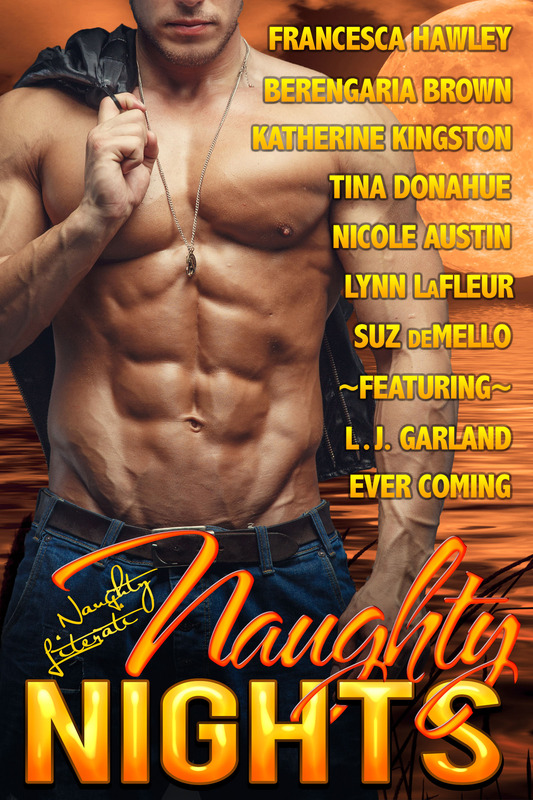 Wicked Hot in Naughty Nights