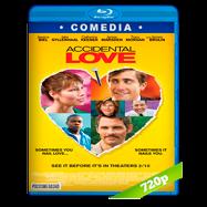 Accidental Love (2015) Full HD 1080p Audio Dual Latino-Ingles