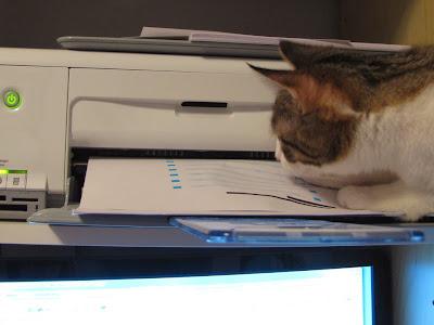 В ожидании отпечатанного документа на принтере Canon PIXMA MX451