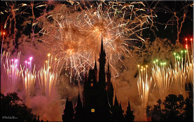 Wishes, Disney Fireworks, Magic Kingdom, Focused on the Magic