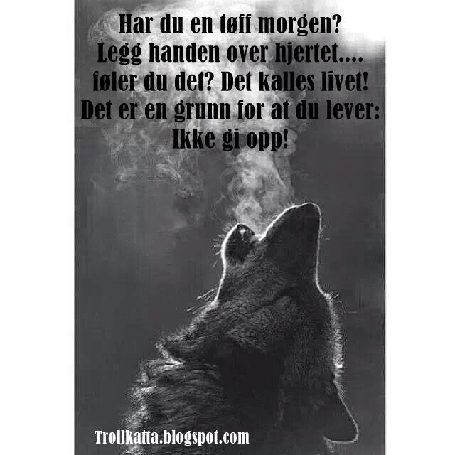 dikt til bruden norweigian