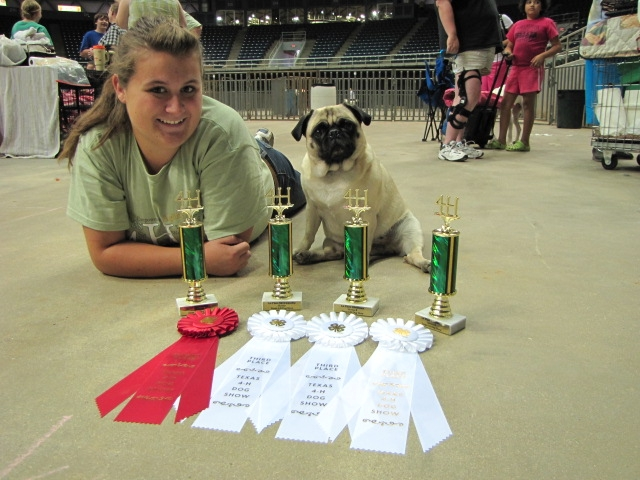 Rockwall County 4-H News: State 4-H Dog Show Highlights