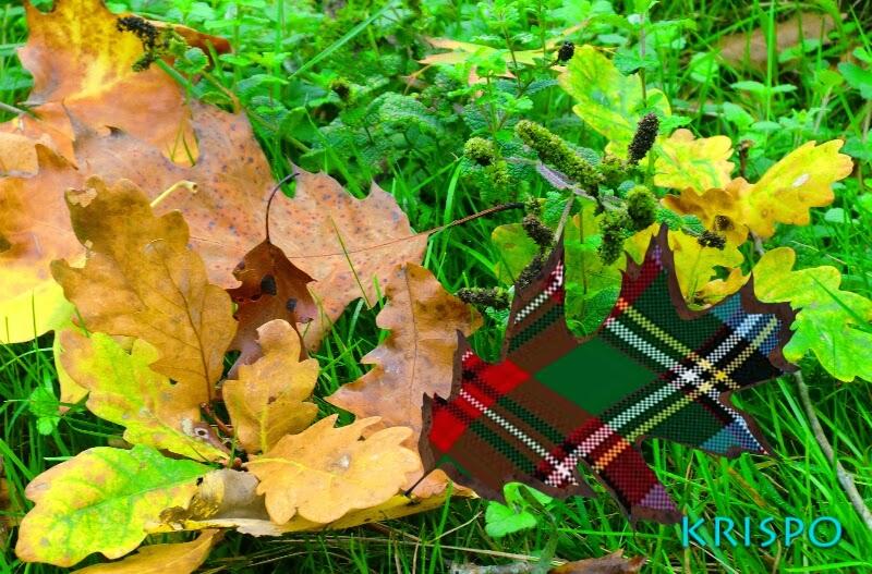 fotomontaje de hoja con cuadros escoceses en hierba