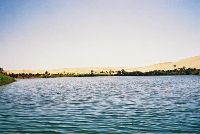 Oasis Landform Desert