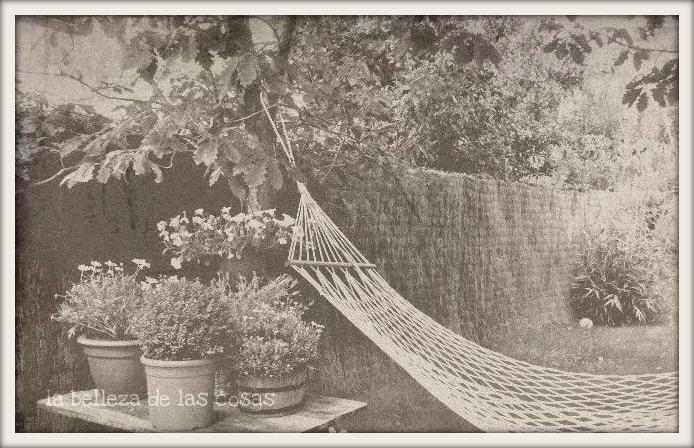 La belleza de las cosas mi jardin for Cerrar valla jardin