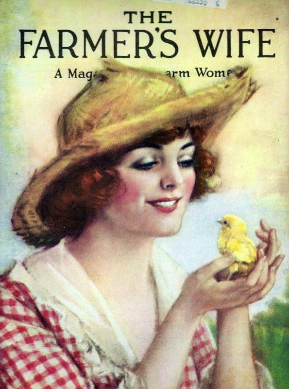 The Modern Farmer's Wife Facebook Group Sew~Along 2014-2015