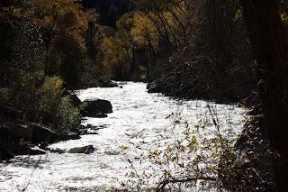 Realtor Colorado Springs | Colorado Real Estate | Briargate 80920 | http://www.benhomes.com