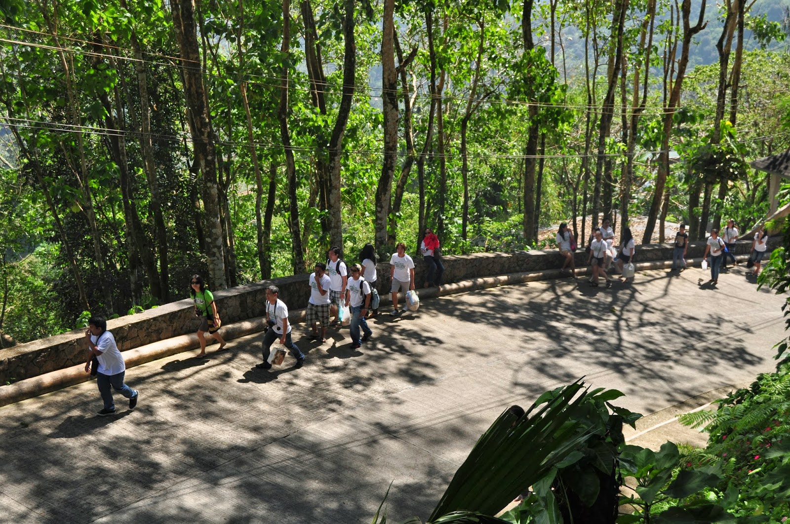 Image Gallery Mountain View Busay