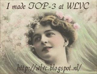 In de top 3 bij het WLVC blog