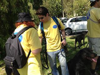 Australian Shepherd dog trekking in Oeiras