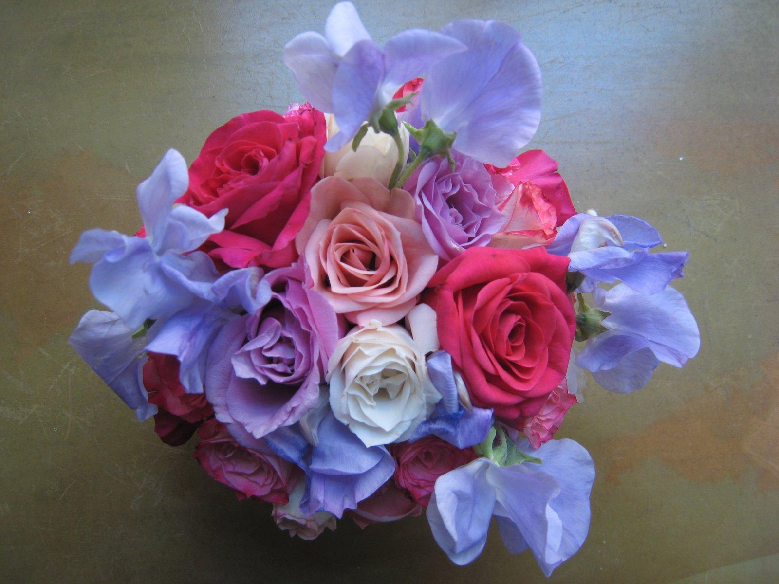Fotografias de flores rosas (120 fotos de rosas de calidad  - Imagenes De Rosa Y Flores