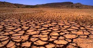 Sequía y sus efectos