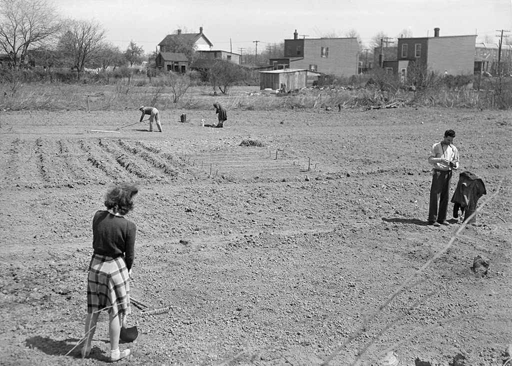 History In Photos Victory Gardens
