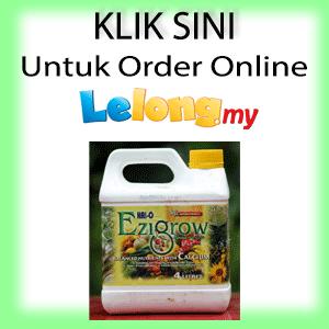 Order Online Melalui Lelong.My