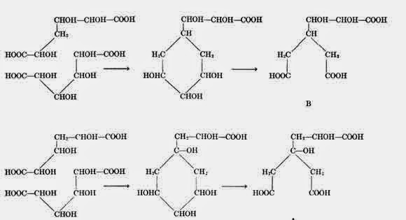 CHEMISTRY, ORIGIN AND FUNCTION IN PLANTS