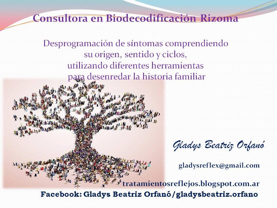 Biodecodificación Rizoma