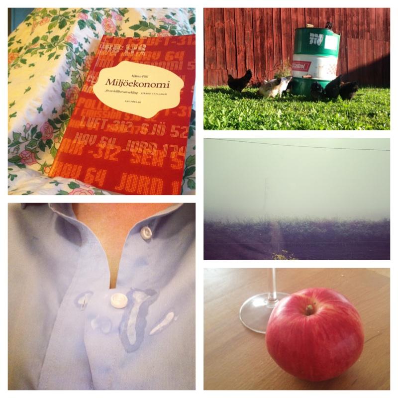 Vardagsbetraktelser: September genom Instagram