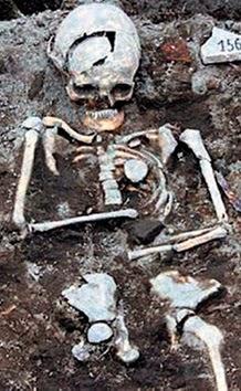 Vampir iskeleti