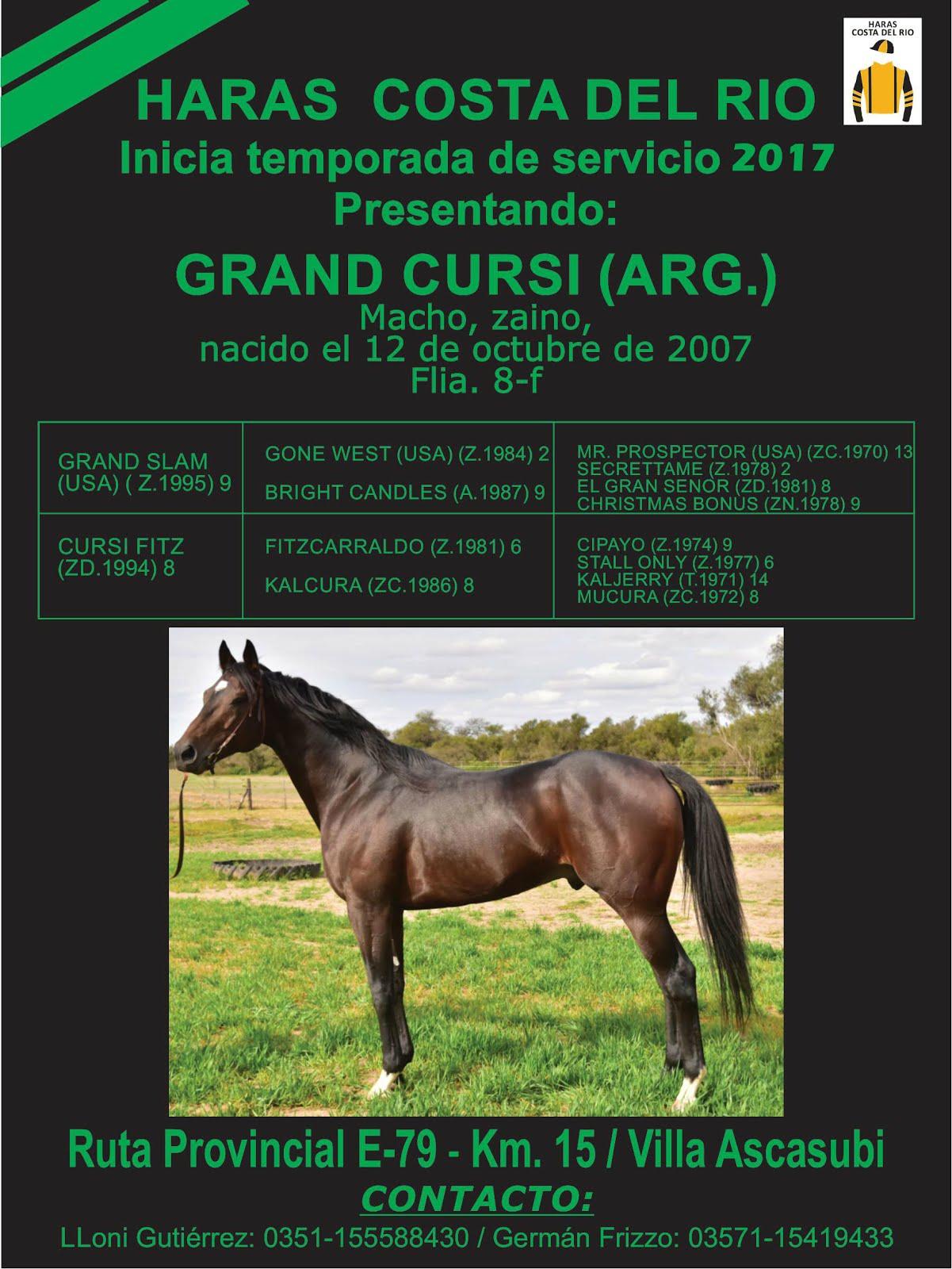 GRAND CURSI 1