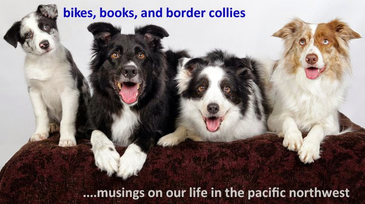 Bikes, Books, and Border Collies