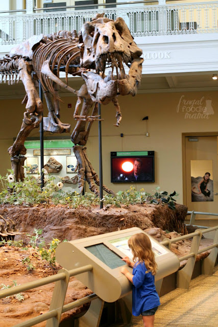 The Dinosaurs in Their Time exhibit at the Carnegie Museum of Natural History is the first permanent exhibit in the world to feature scientifically accurate environments from the age of the dinosaurs! #kidsburgh #lovepgh