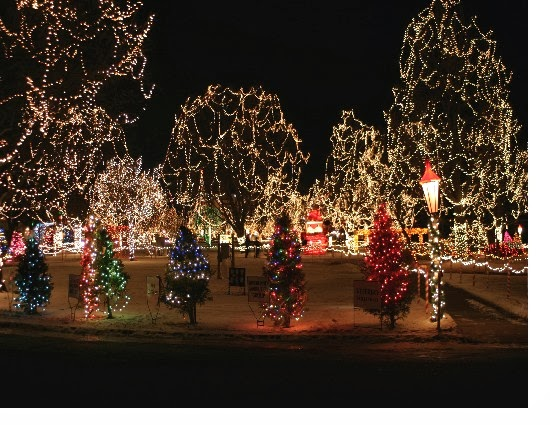 La crosse rotary christmas light display a must see westby house inn you can drive through the park or walk it to get yourself in the spirit admission is non perishable goods andor cash donations that support the local food solutioingenieria Gallery