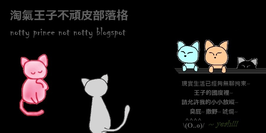 淘氣王子不頑皮/notty prince not notty