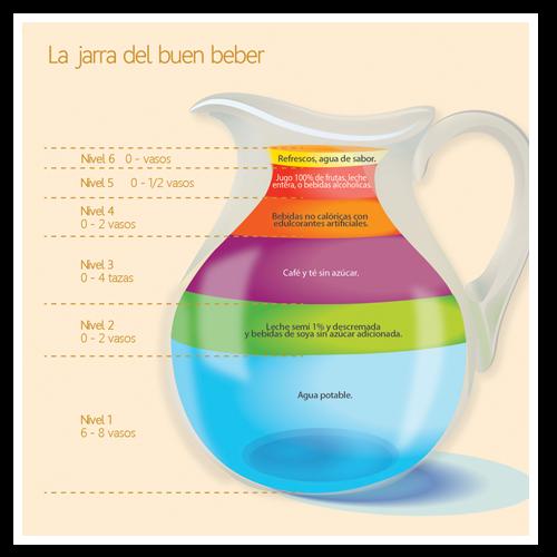 Tareas : Tareas.. El Plato del buen Comer y la Jarra del buen beber