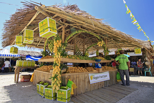 marketing of guimaras mangoes to the The guimaras mango, which is best enjoyed fresh—some prefer its dried variety—is grown in mango plantations that cover a vast area of almost 8,000 hectares so imagine a sprawling, verdant landscape more than your eyes can see.