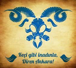 Diren Ankara!