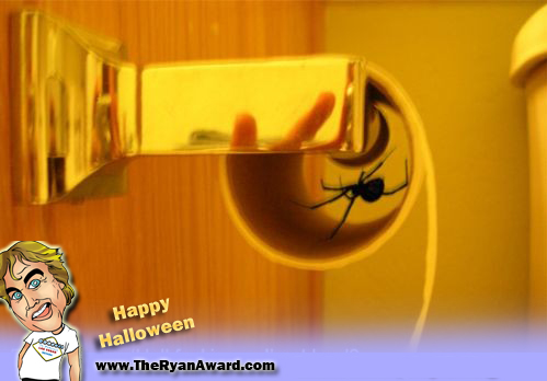 spider in toilet paper roll, happy halloween...