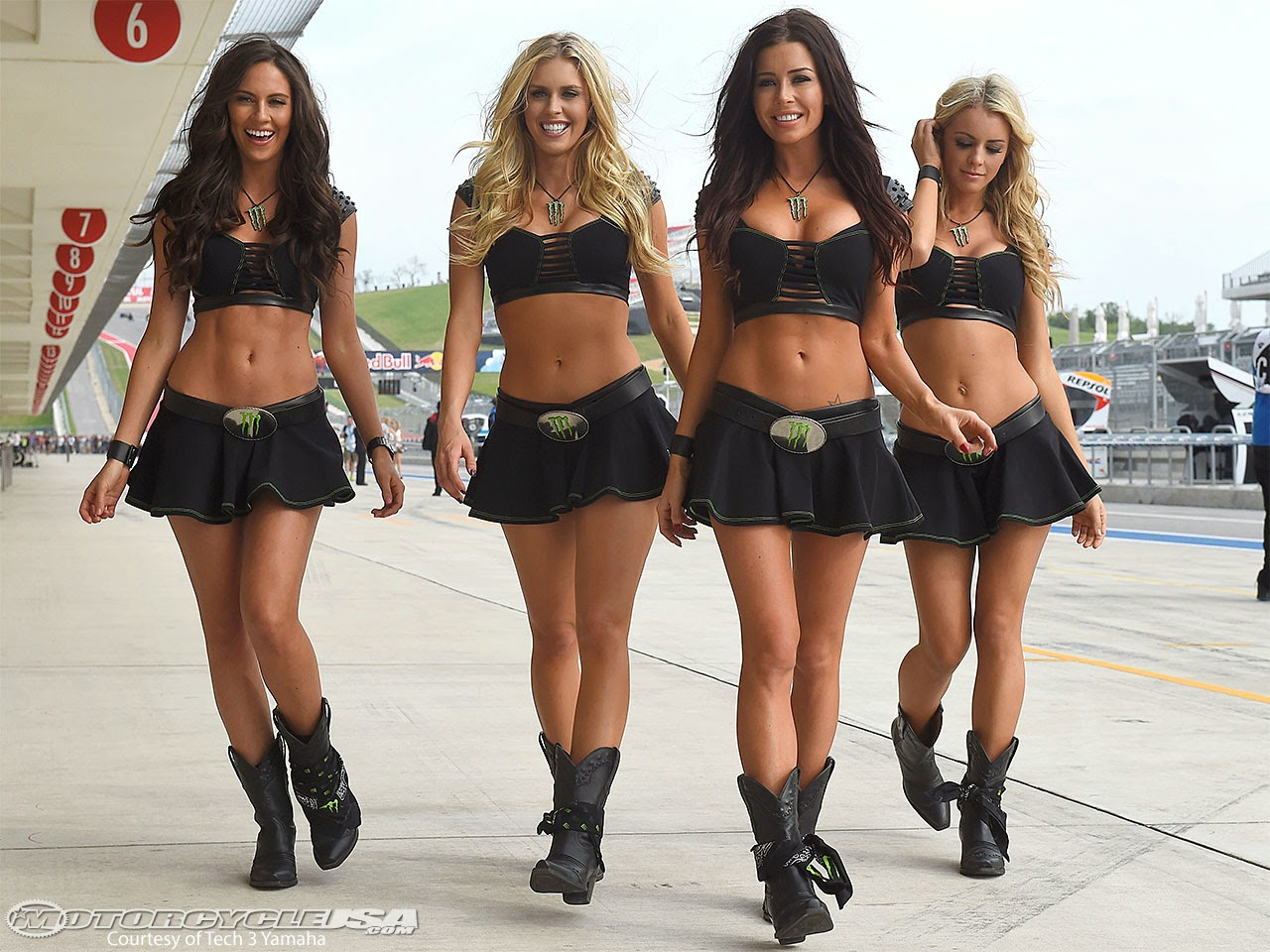 Grid girl hot asses