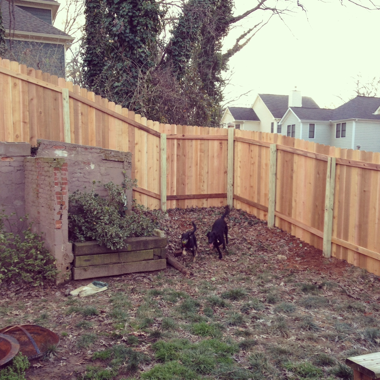 fingers crossed fencing in the backyard