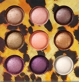 http://www.bhcosmetics.com/products/wild-child-baked-eyeshadow-palette