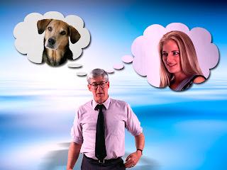 Жениться или завести собаку?