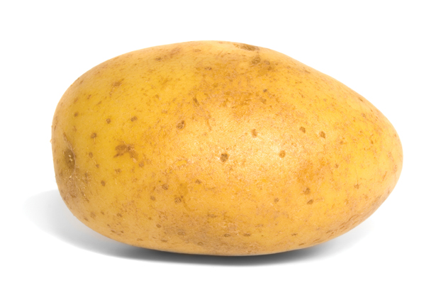 Inbox_potato.jpg