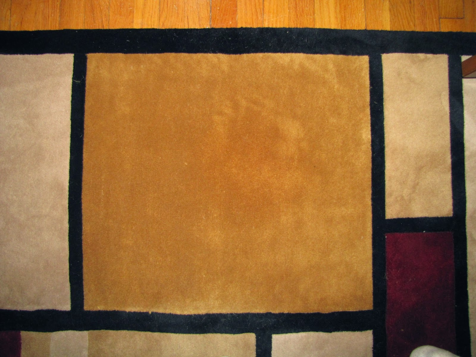 After the carpet has dried, you will be able to see the stain is gone. In fact you would never even have known it was there.