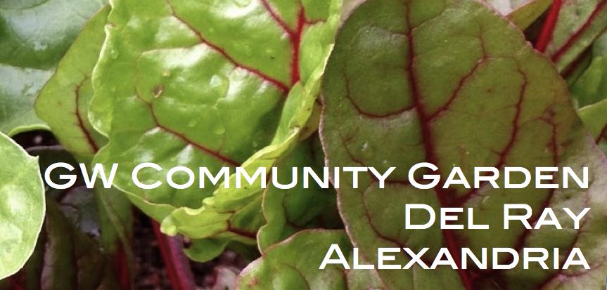 GW Community Garden