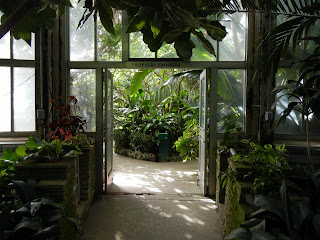 Inside the Whitcomb conservatory on Belle Isle in Detroit, Michigan