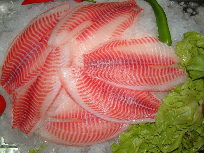 Dna barcoding still fishy for Red fish fillet