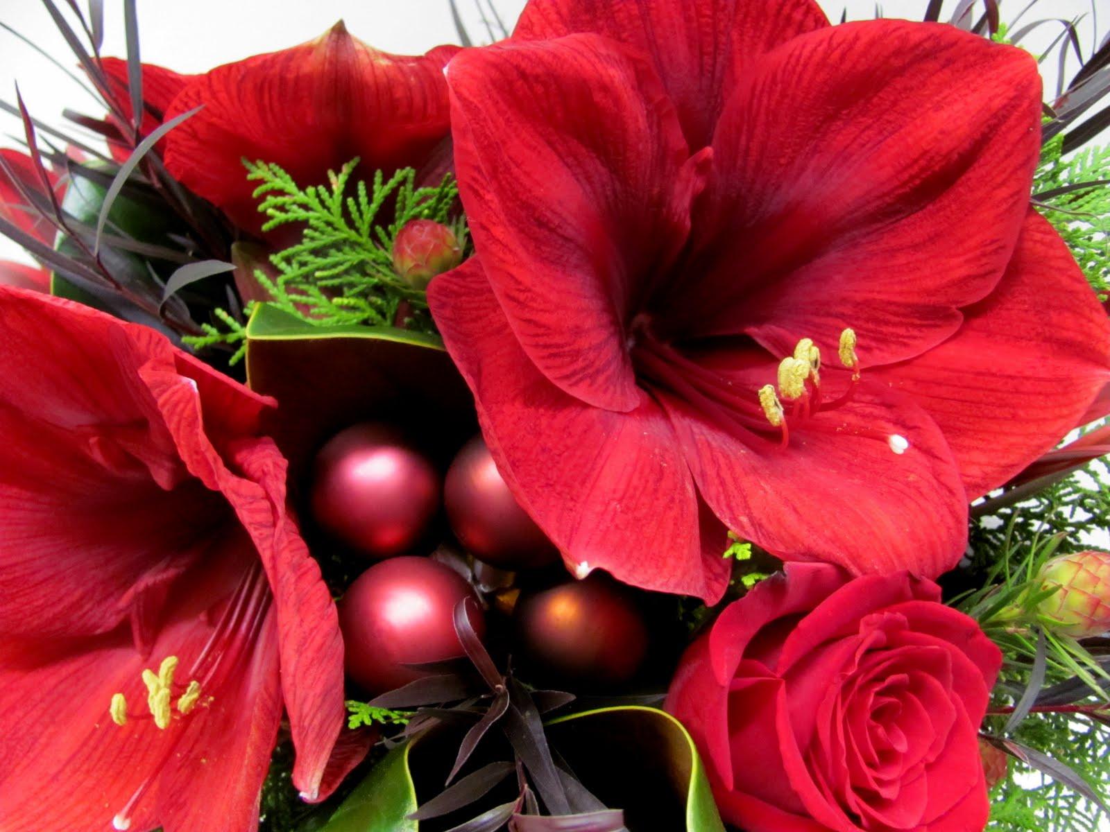 Summer Flower Christmas Flowers